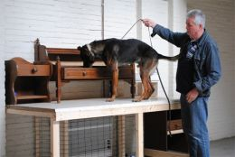 ©2013 Police Dog Center 'Het Zuiden' BV All Rights Reserved.